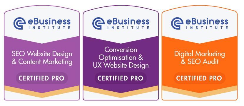Ebusiness Institute Advanced Digital Marketing Certificate